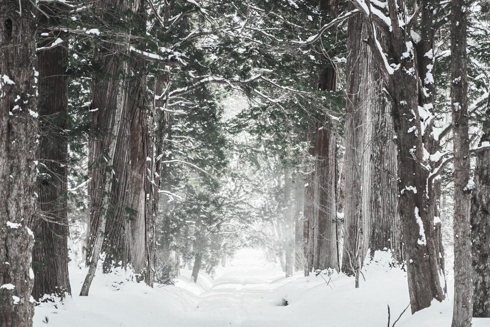 winter_nature_1.BSQ0t после обработки