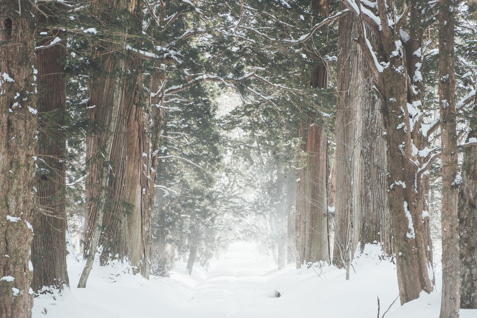 winter_nature_1.BSQ0t до бработки