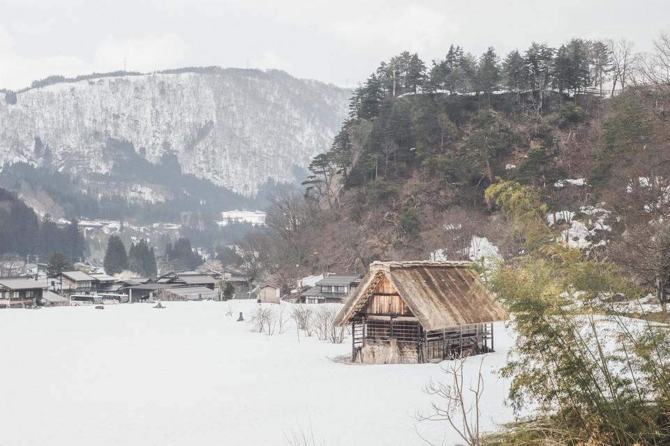 winter_nature_3.LRg1Y до бработки