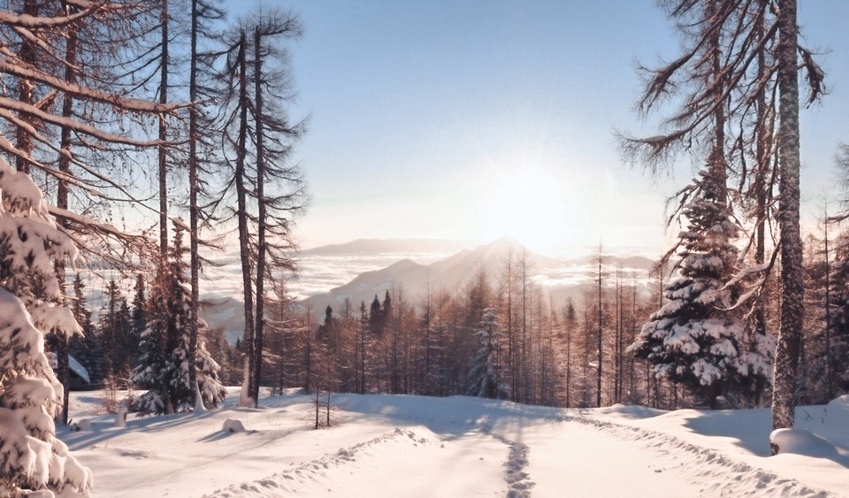 winter_nature_8.8myJV после обработки