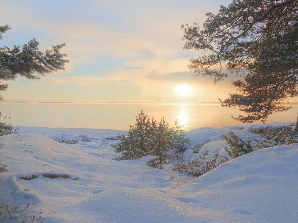 winter_nature_9.wDX6n до бработки